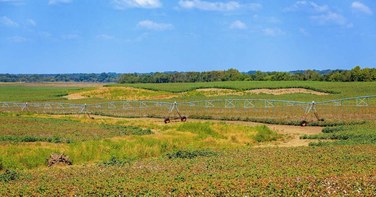 field-water-irrigation-system